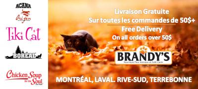 Brandy's Nourriture pour Animaux et Cafe Canin