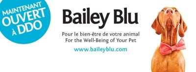 Bailey Blu Animalerie