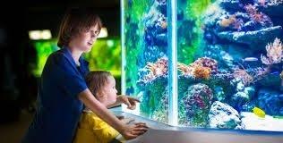 AquaSense Workshop