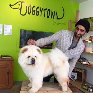 Adorable Doggytown