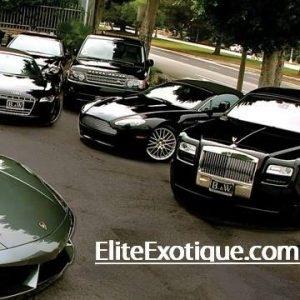 Elite Exotique