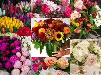 Best Florists in Montreal